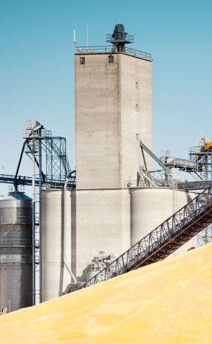 Spike Trade хотів стати рок-зіркою українського зернотрейдингу, але збанкрутував. Що пішло не так /Фото Getty Images
